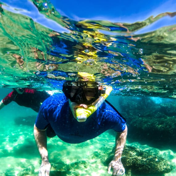 Snorkeling in Cabo